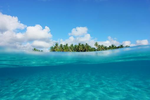 Tropical island, partial underwater view - gettyimageskorea