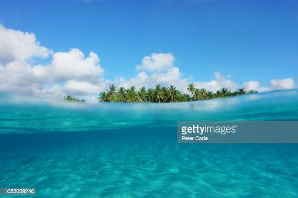 tropical island, partial underwater view - underwater stock pictures, royalty-free photos & images