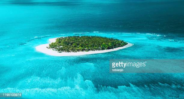 tropical island - fiji stock pictures, royalty-free photos & images