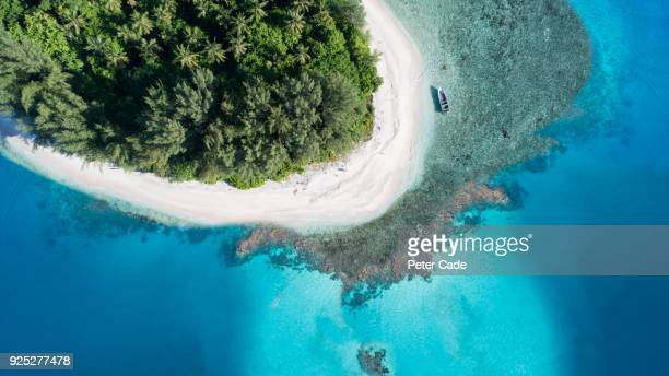 tropical island - papua new guinea stock pictures, royalty-free photos & images