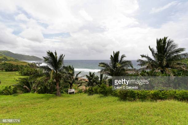 A Tropical Island Scene in Batanes, Philippines