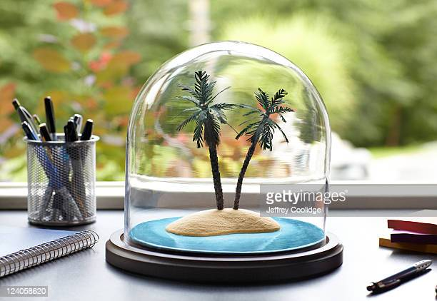 Tropical Island Under Glass Dome