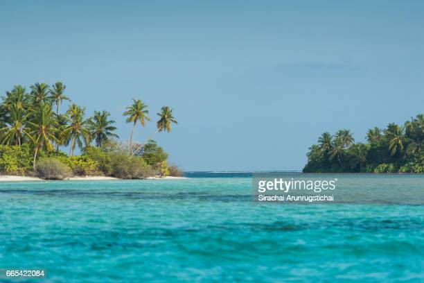 tropical island with coconut trees and clear blue sea - atoll stock pictures, royalty-free photos & images