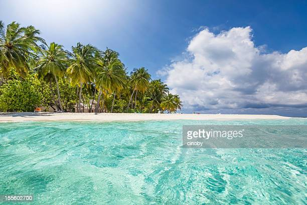 Tropical Island with crystal waves