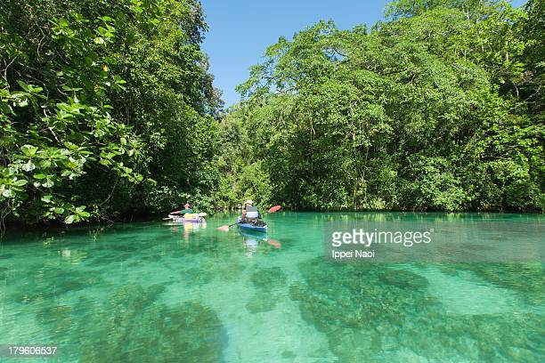 Tropical lagoon kayaking, Palau, Micronesia