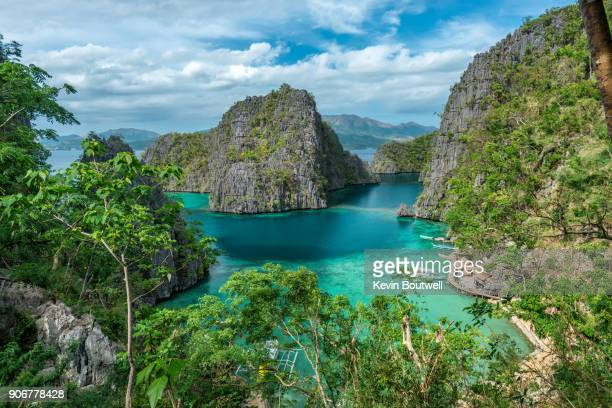 tropical lagoon on the island or coron in the philippines - フィリピン ストックフォトと画像