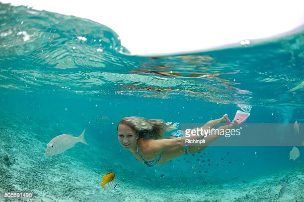 tropical lagoon swim - see through swimsuit stock photos and pictures