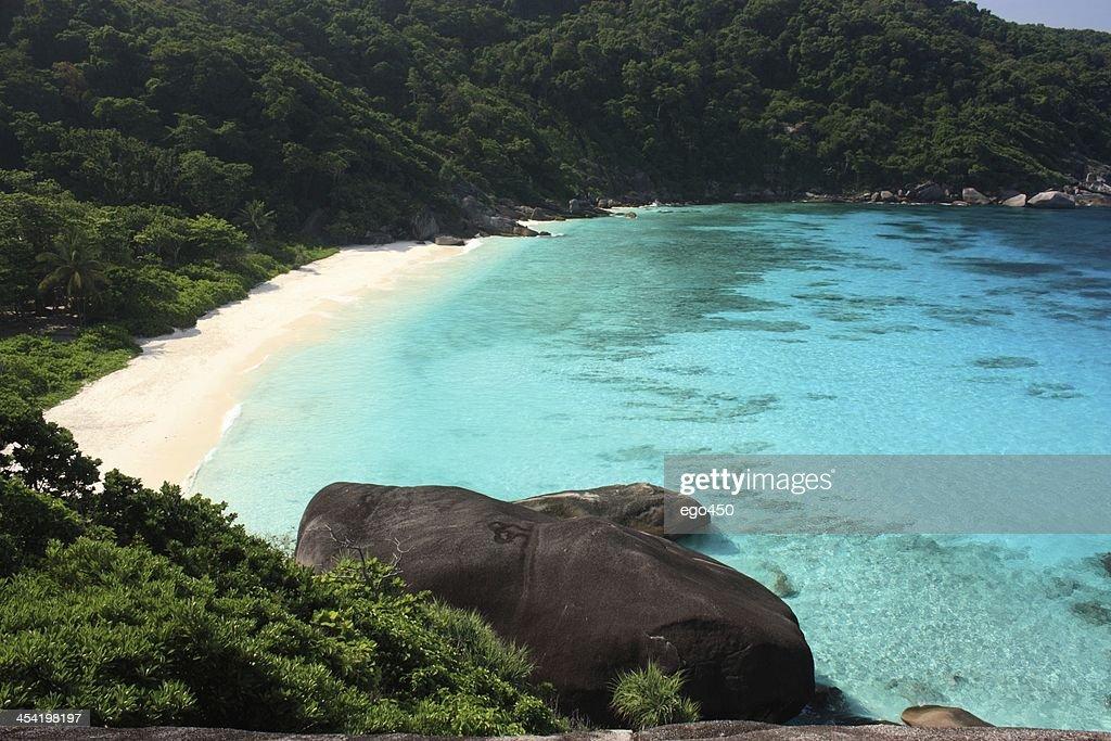 Paisaje Tropical : Foto de stock