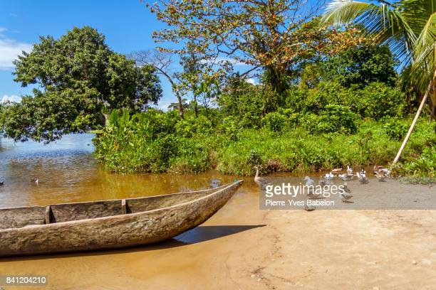 tropical landscape - pierre yves babelon madagascar stock pictures, royalty-free photos & images