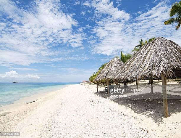 Tropical Pacific Island Beach