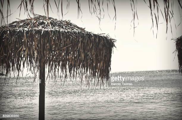Tropical Palm Thatch Umbrella on the beach