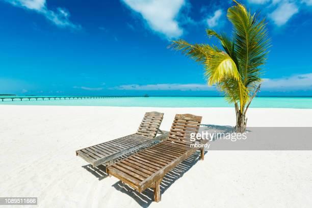 tropical paradise at dhiffushi holiday island, south ari atoll, maldives - sun lounger stock pictures, royalty-free photos & images