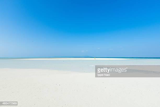 Tropical paradise beach and clear sky