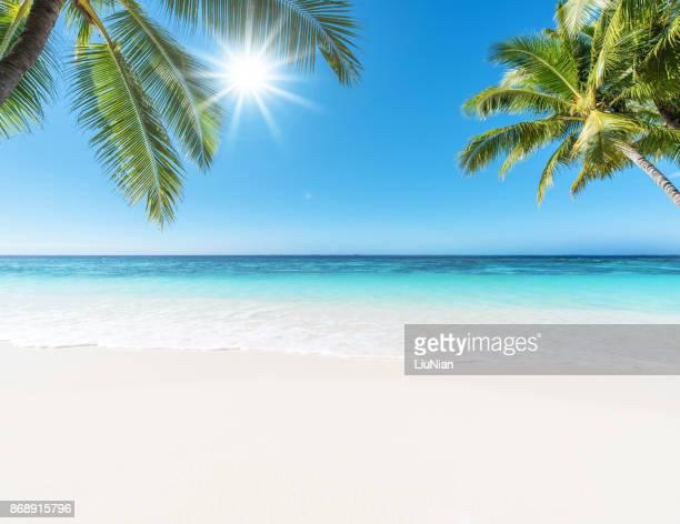 Tropiskt paradis strand och sol