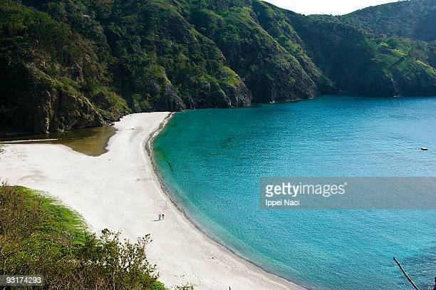 tropical paradise beach of remote tokyo island - ippei naoi stock photos and pictures