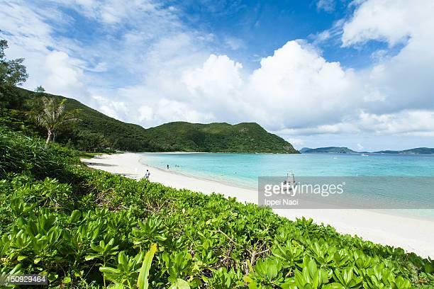 Tropical paradise beach, Okinawa