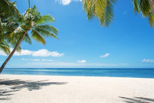 Tropical Paradise Landscape 1033545162