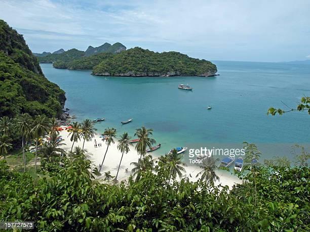 Tropical Paradies