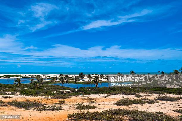 tropical paradise - crmacedonio stockfoto's en -beelden