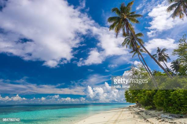 tropical paradise - sabah state stock pictures, royalty-free photos & images
