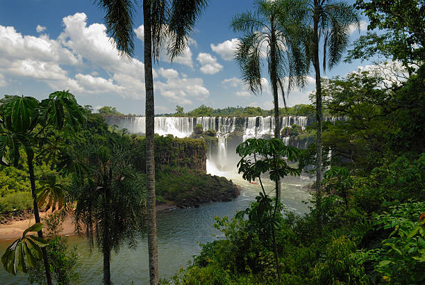 Tropical Paradise With Falls Wall Art