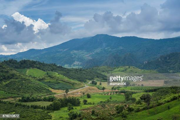 Tropical Rain forest Landscape from Chiangmai the North of thailand