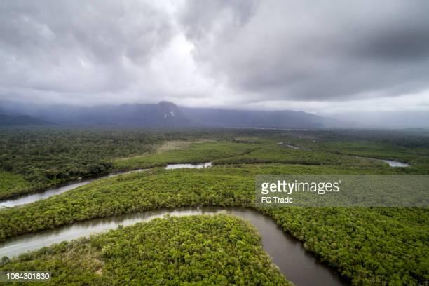 bosque húmedo tropical - paisajes de peru fotografías e imágenes de stock