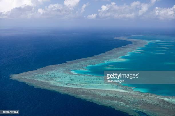 Tropical reef, Great Barrier Reef, Queensland, Australia