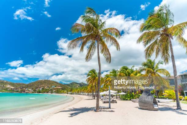 tropical resort, caribbean, antilles, central america - isla de antigua fotografías e imágenes de stock