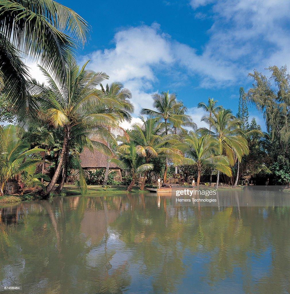 Tropical resort : Stock Photo