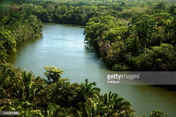 Jungle river africa stock photos and pictures getty images tropical river and aerial views of the rainforests of africa sciox Image collections