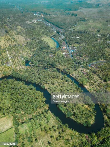 tropical river from above, bali, indonesia - drainage_basin stock pictures, royalty-free photos & images