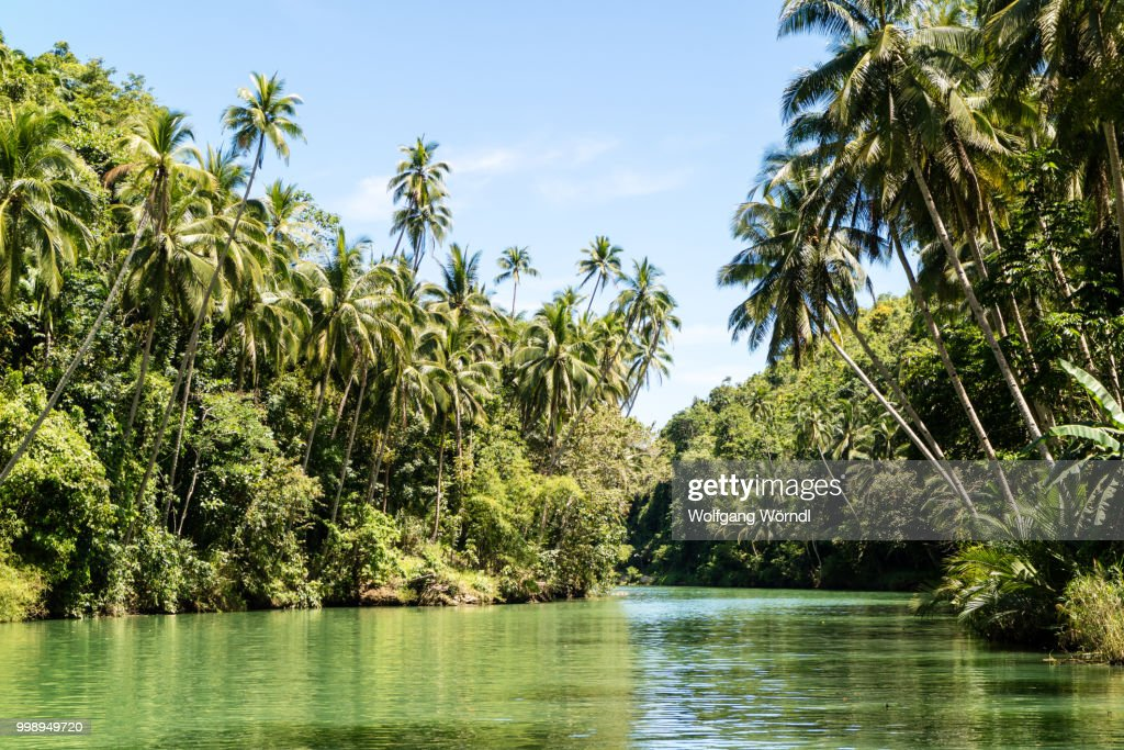 Tropical River : Stock Photo