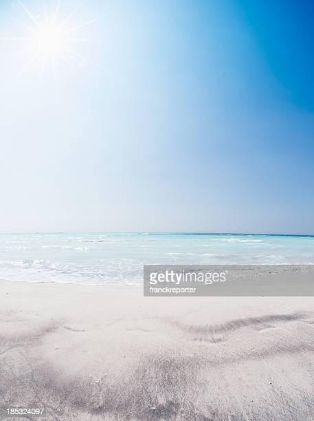 Tropical sand summer Beach landscape