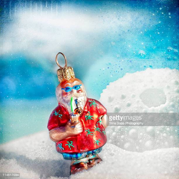 Tropical Santa Claus Ornament Still Life