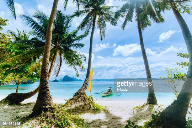 tropical scenery with beautiful palm beach and boat, el nido, philippines - el nido stock pictures, royalty-free photos & images