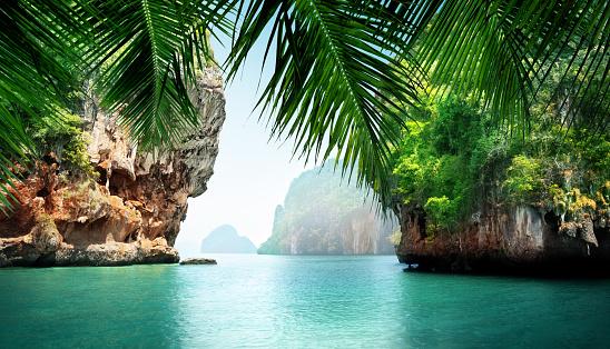 tropical sea and rocks 518356812