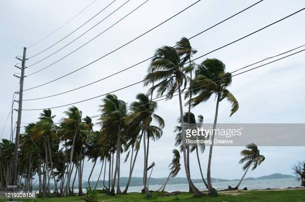 tropical storm karen - extreme weather stock pictures, royalty-free photos & images