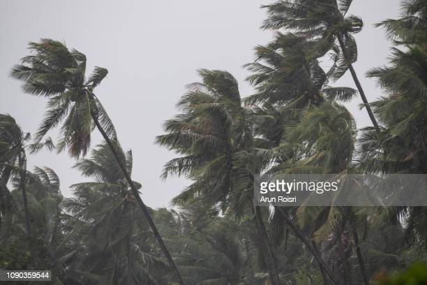 tropical storm pabuk - extreme weather stock pictures, royalty-free photos & images