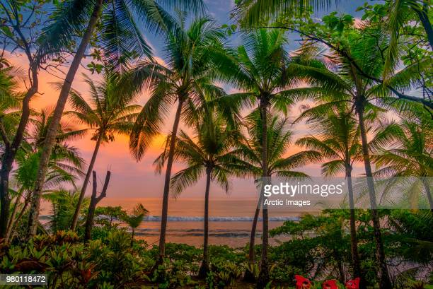 Tropical Sunset, Beach, Corcovado National Park, Costa Rica