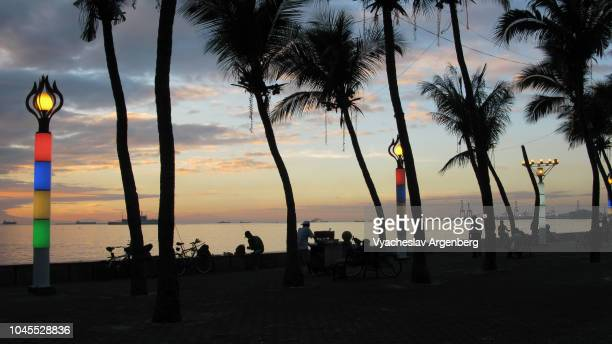 tropical sunset in manila, palm trees, twilight sky, philippines - argenberg stock pictures, royalty-free photos & images