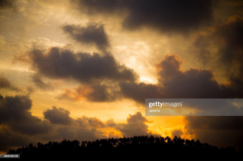 Tropical sunset : Stock Photo