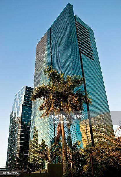 Tropical Urban Miami
