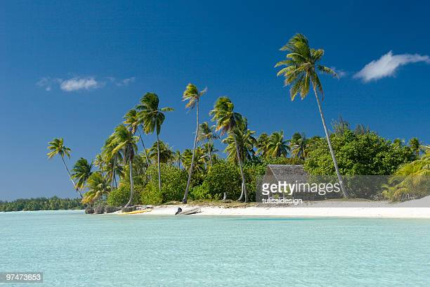tropical vacation - polynesia stock pictures, royalty-free photos & images