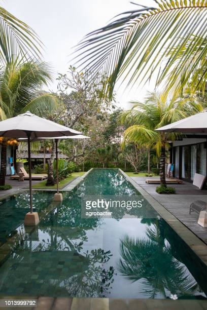 tropical villa among palm trees at swimming pool with turquoise water - interior design foto e immagini stock