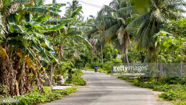 Tropical Village on Nias Island in North Sumatra