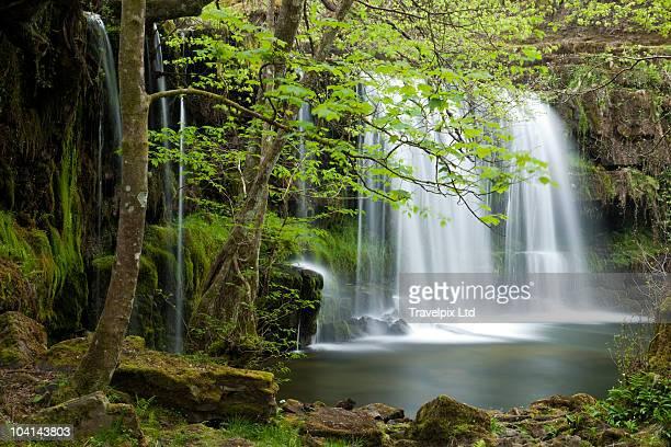 Tropical Waterfall, Amazon Rain forest