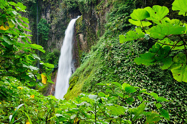 Tropical Waterfall Framed By Lush Foliage Wall Art