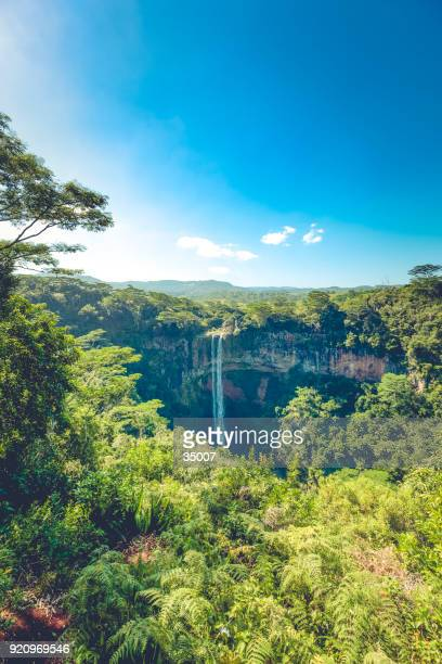tropical waterfall in chamarel on mauritius island, africa - mauritius stock photos and pictures