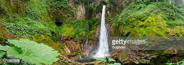 xxxl: tropical waterfall in volcanic crater - ogphoto stock pictures, royalty-free photos & images